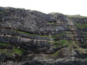 Steilküste Färöer