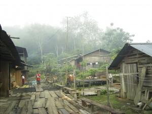 Das Iban Dorf am Morgen, der Regenwald dampft