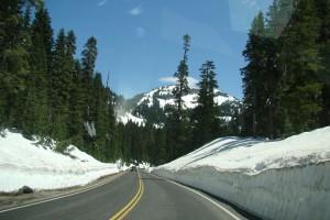 in der Nähe des Mt. Rainier, WA