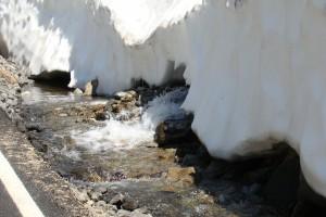 Schneeschmelze im Juni in der Nähe des Mt. Rainier, WA