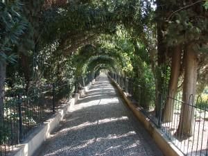 schattiger Weg in der Alhambra