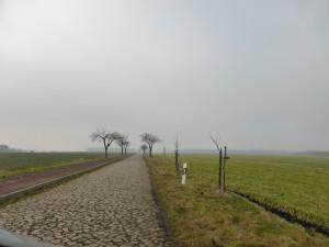 einsame Wege in Sachsen-Anhalt