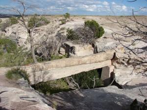 """""""Brücke"""" im Petrified Forest NP"""