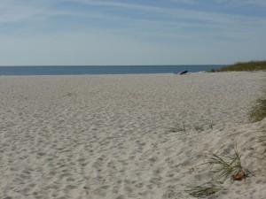 Seagull Beach, West Yarmouth, Cape Cod