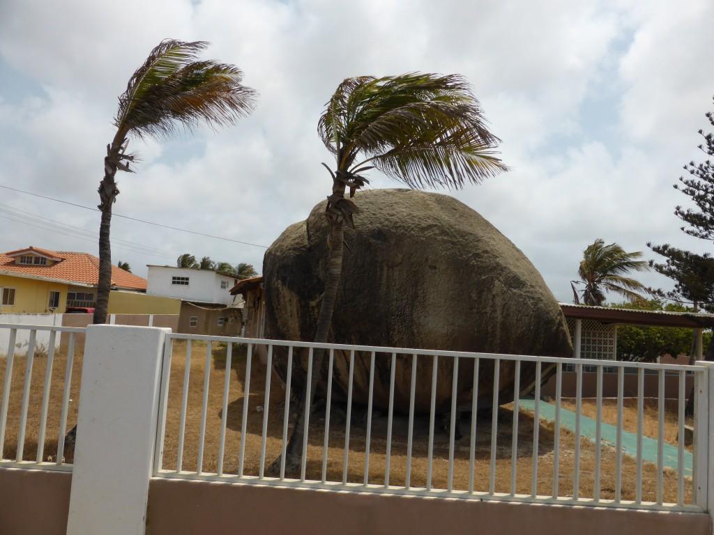 Vorgarten in Aruba