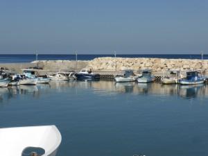 Harbour of Latchi