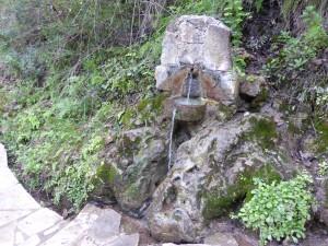 das Wasser der ewigen Jugend... (oder so)