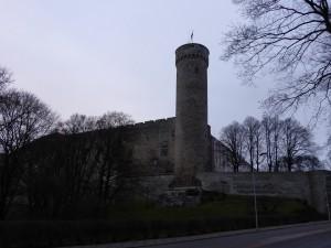 Tall Hermann
