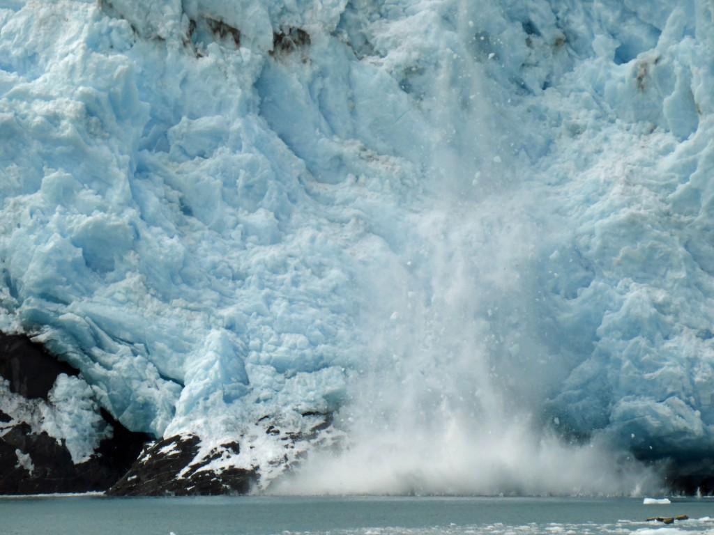 Der Aialik Gletscher kalbt.