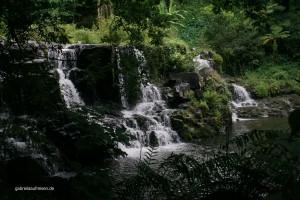 Eureka House Waterfalls