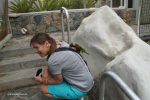 Papagei und ich