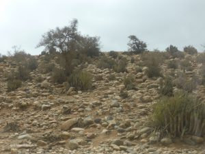 near Agadir