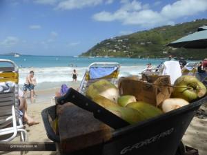 fresh coconut juice at Cane Garden Bay Beach