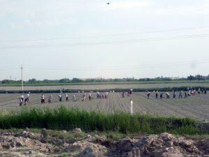 Feldarbeiter kurz hinter Buchara