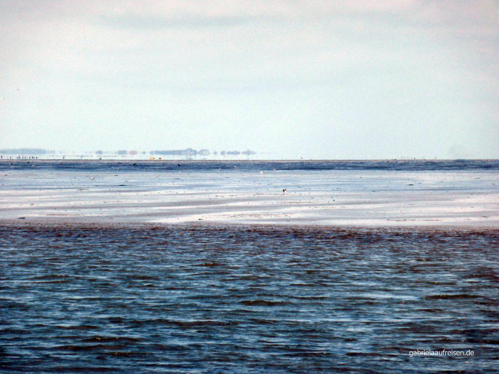 Halligen im Nordsee Watt
