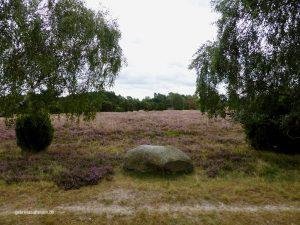 ein typischer Findling in der Lüneburger Heide