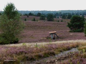 Bienenstock in der Lüneburger Heide