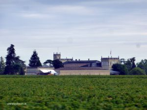 a vinery in Médoc