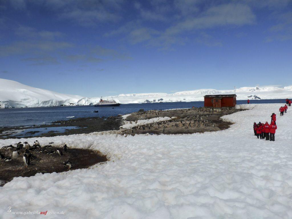 Antarktis, Blick von Mikkelsen Harbour