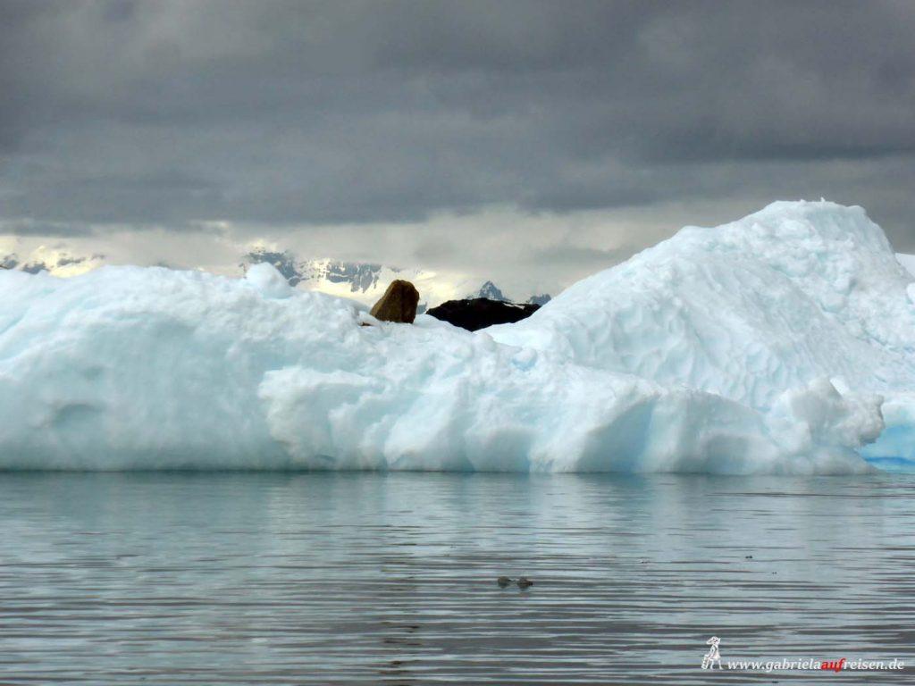 Antarktis, Eisberg mit Geröll