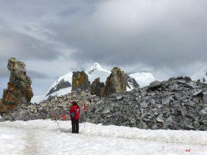 Antarktis, Halfmoon Bay, Felsen