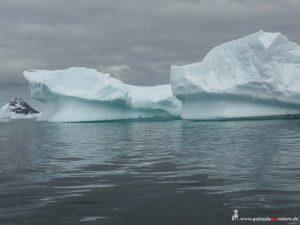 Antarctica, Cierva Cove, huge icebergs