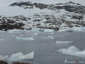 Antarctica, Cierva Cove, Primavera Station