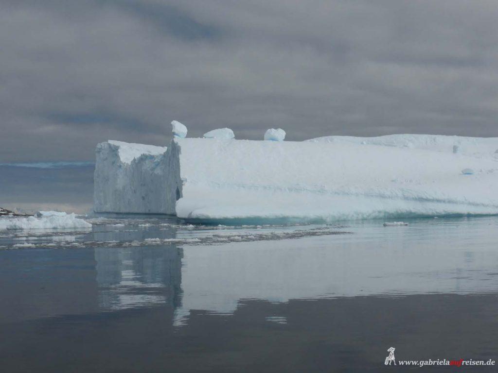 Antarktis, Cierva Cove, Tafeleisberg