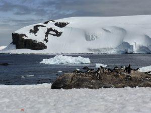 Antarctica, Mikkelsen Harbour
