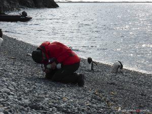 Yoga, Antarctica, Halfmoon Bay