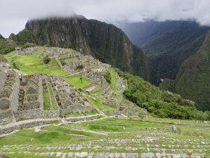 fields of Machu Picchu
