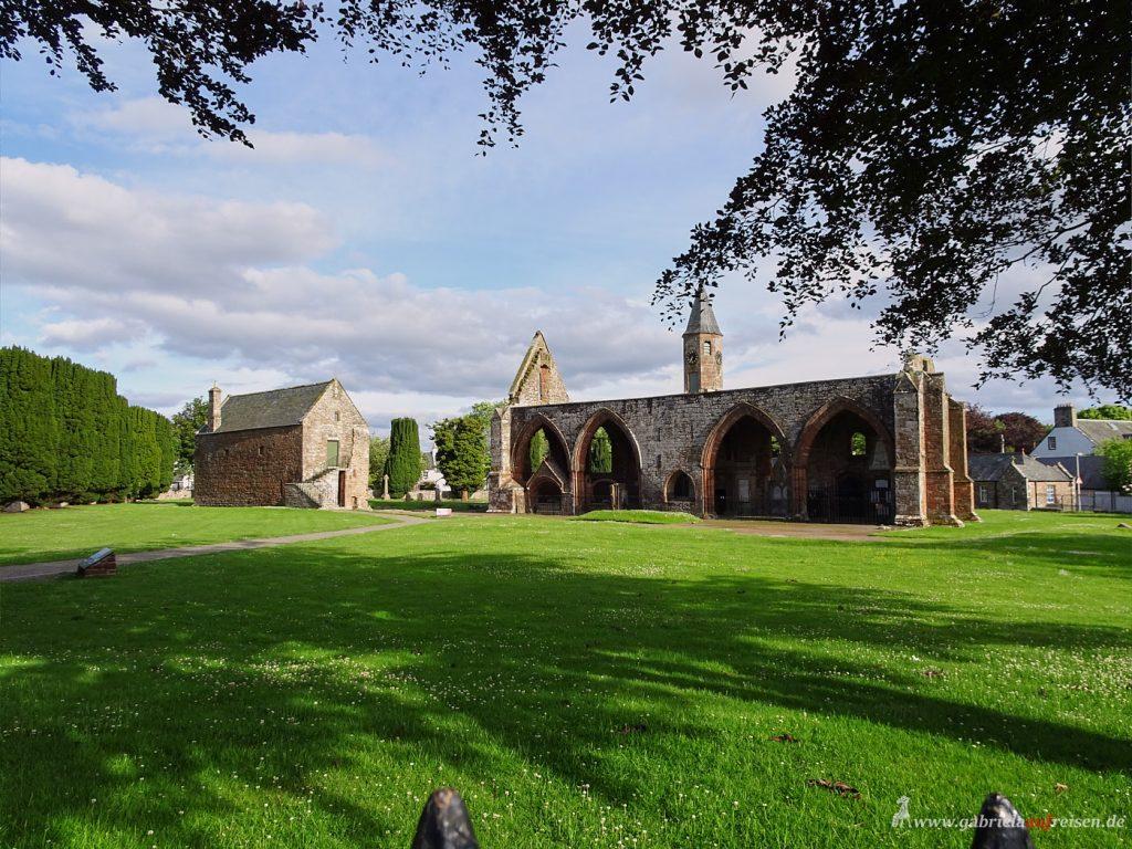 Kirchenruine in Fortrose