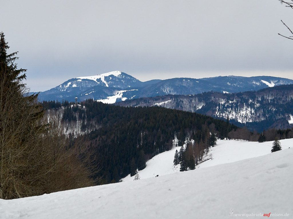 vierthoechster Berg im Schwarzwald