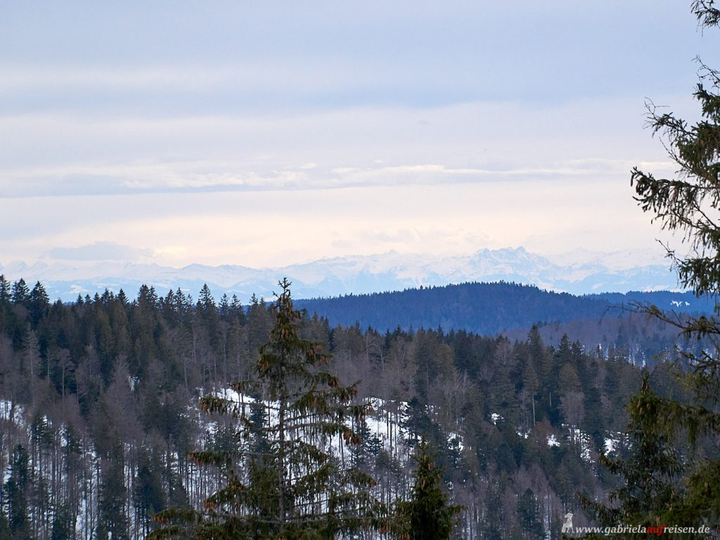 Panoramablick im Schwarzwald