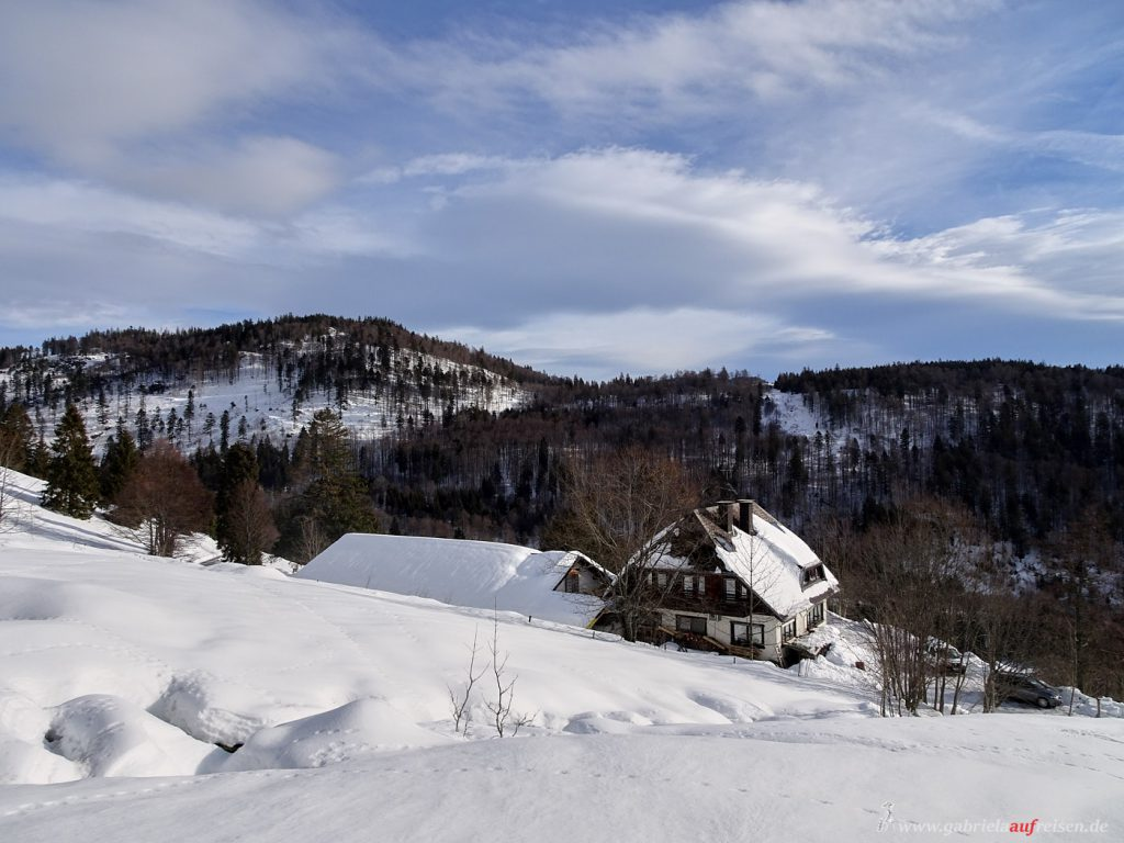 Black Forest in winter