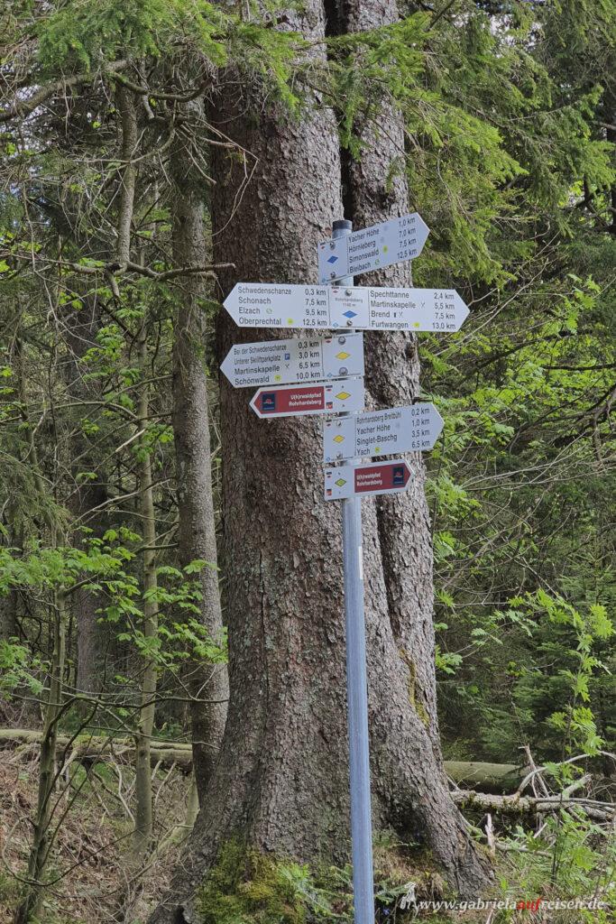 Einige Wanderungen für alle Fitnesslevel im südlichen Schwarzwald, z.B. am Kandel.