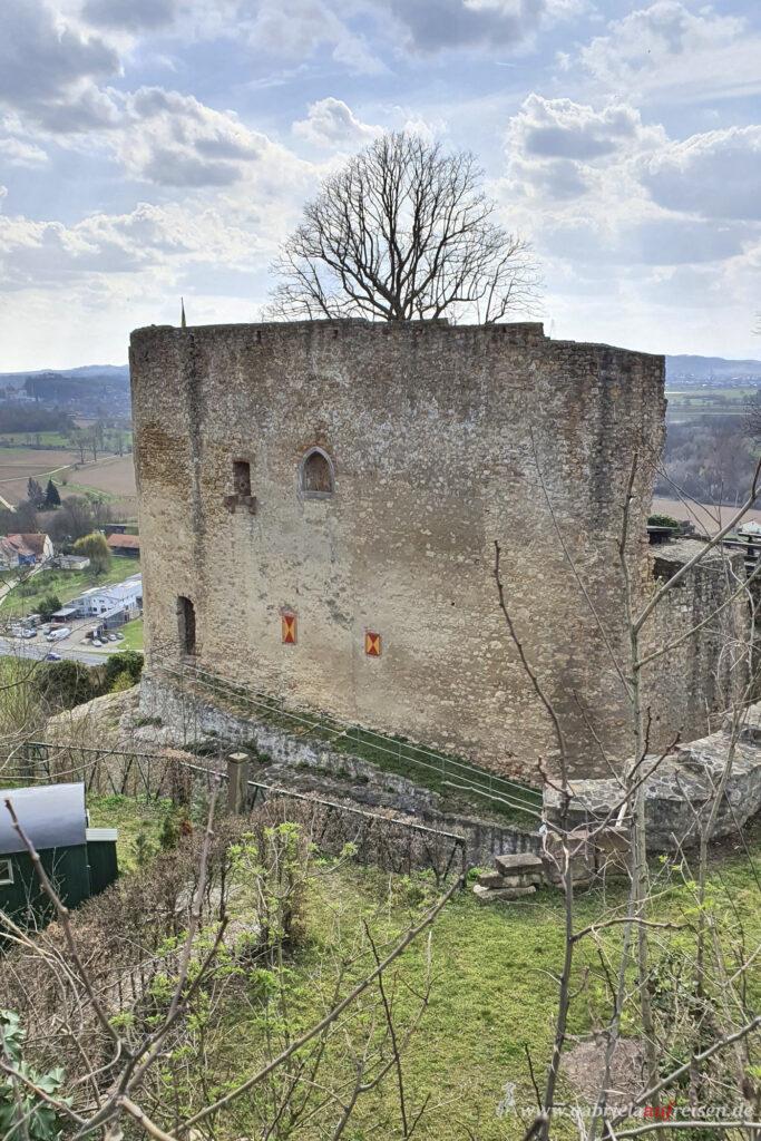 Burgruine-mit-Aussicht