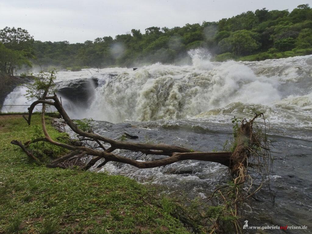 Wasserfall-Murchison-Falls-in-Uganda